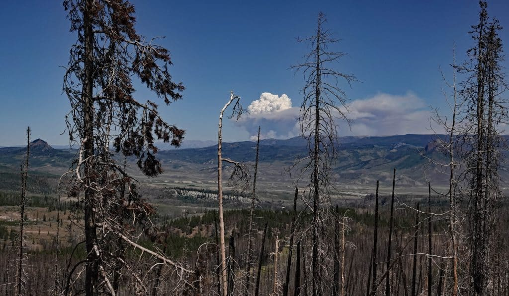 Smoke plume from the Cameron Peak Fire taken on 8/15/2020 from 45 miles away on the Routt Divide Trail, 10 miles south of Rabbit Ears Peak
