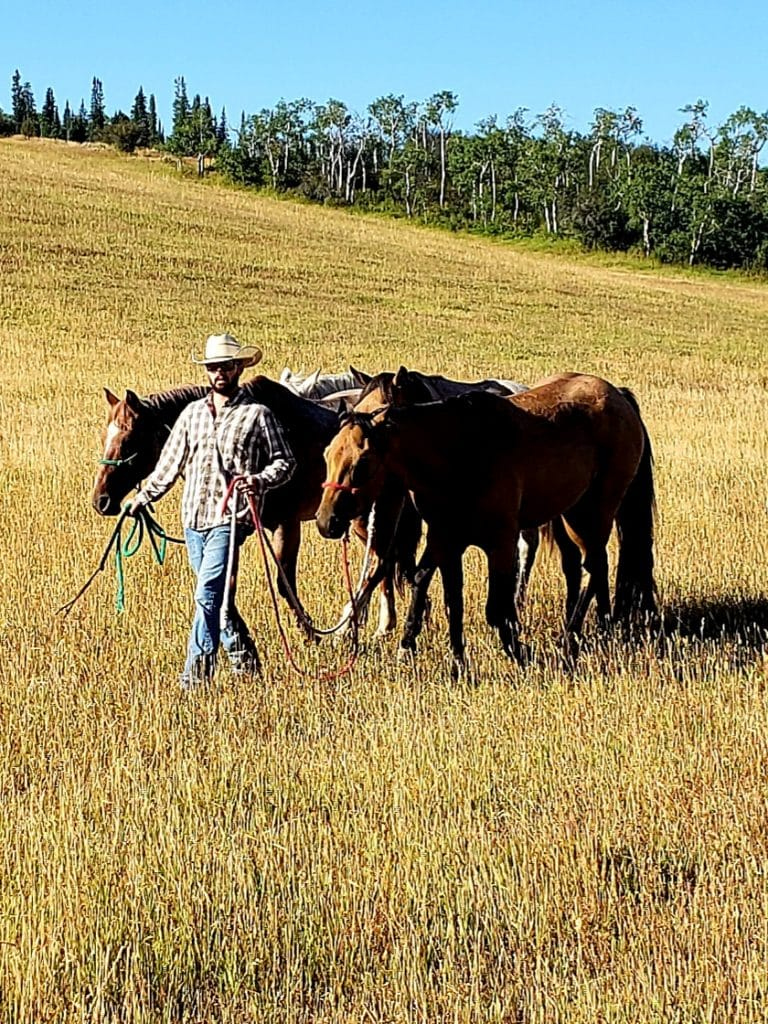 Photo taken last weekend near Emerald Mountain Ranch. My son Hunter Goddard is in the photo and lives on the ranch. He was helping a neighbor round up some cattle.