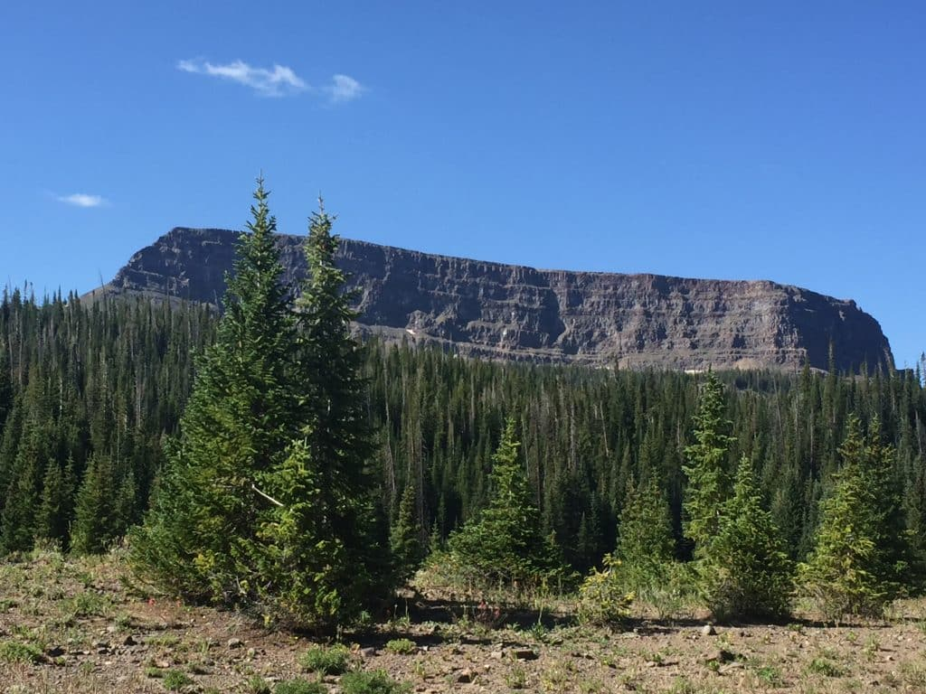 Ship Rock in the Flat Tops Wilderness Area