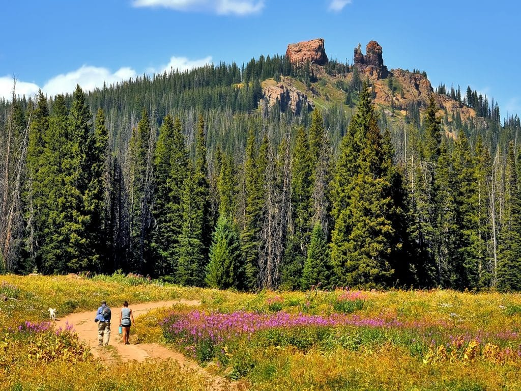 A hike on Rabbit Ears Pass.
