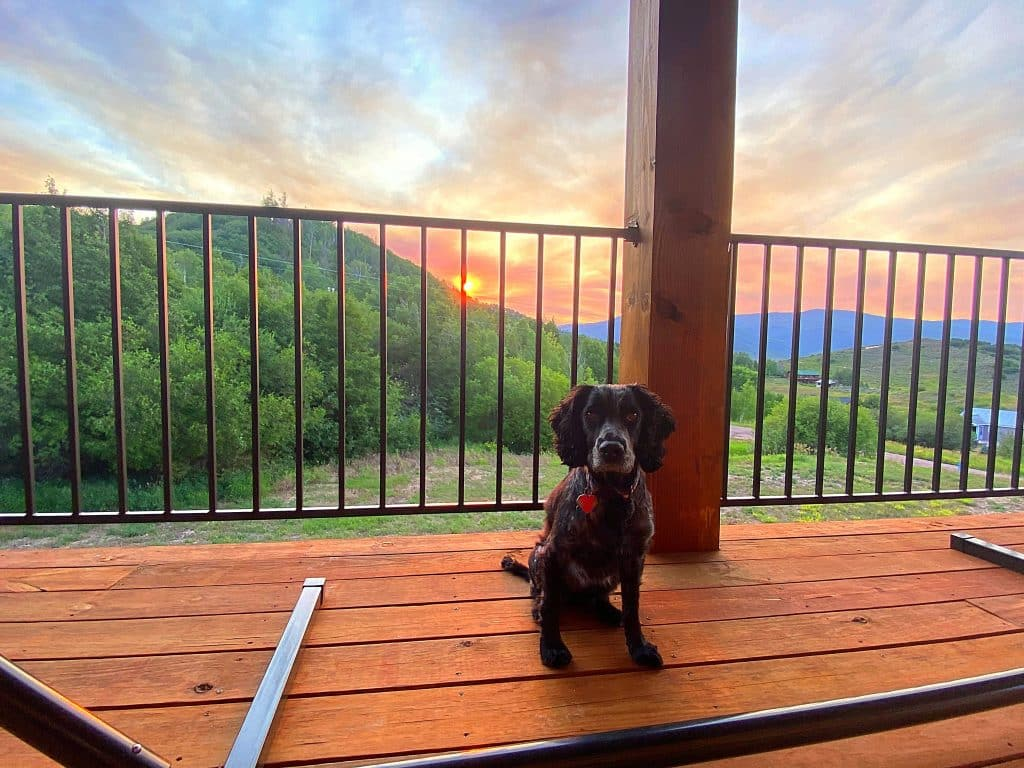 Doggie deck sunset in Routt County