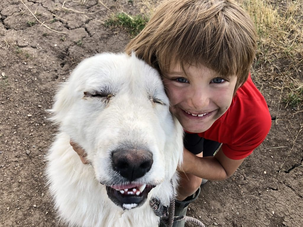 Here is a picture of my son Steel with our recently Adopted puppy, Porter, from Routt County Humane Society. He was adopted on July 31, 2020.