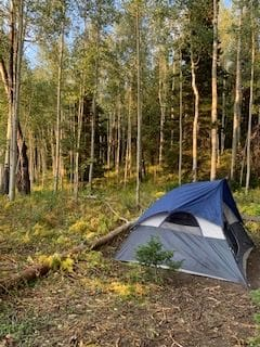 Perfect camping spot this weekend in a beautiful Aspen grove. (No people or face masks for miles.)