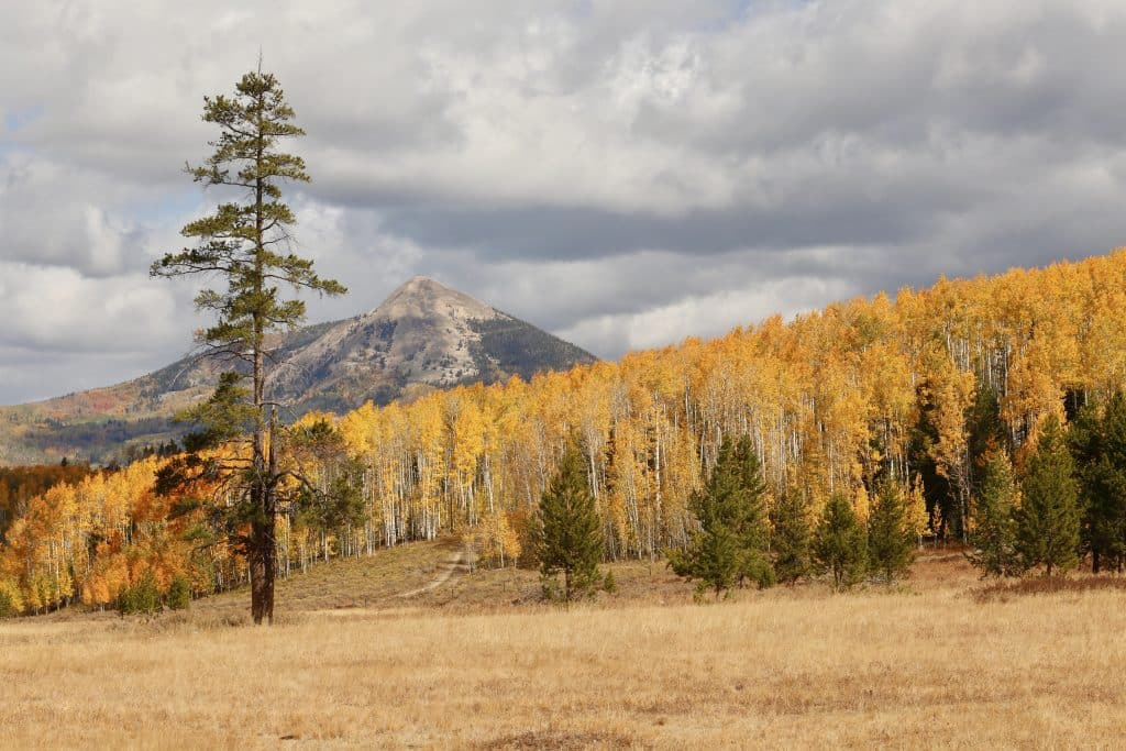 Hahns Peak Autumn, Routt County 62.