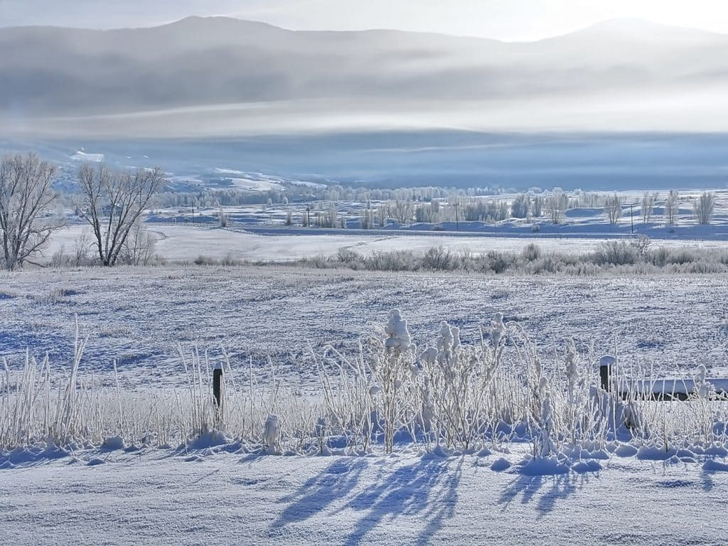 Frosty morning in the Yampa Valley