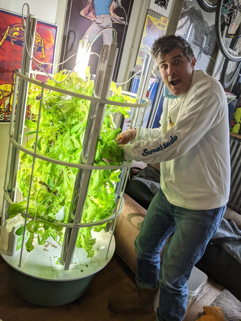 Wow!! 2.5 lbs of lettuce in 60 days!! All for Lift-Up Food Bank, the first of 5 Tower Garden harvests that will stretch thru March. The other 4 are at Soda Creek Elem (2) and Methodist Church (2). Thank you Kelly Bohmer at Allfixed Steamboat Repair and Frank Hogue for supporting the $10 electric bill and ~30gal of water in the Squire Building for this tower!!