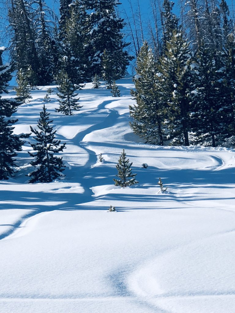 Ski trails on the pass