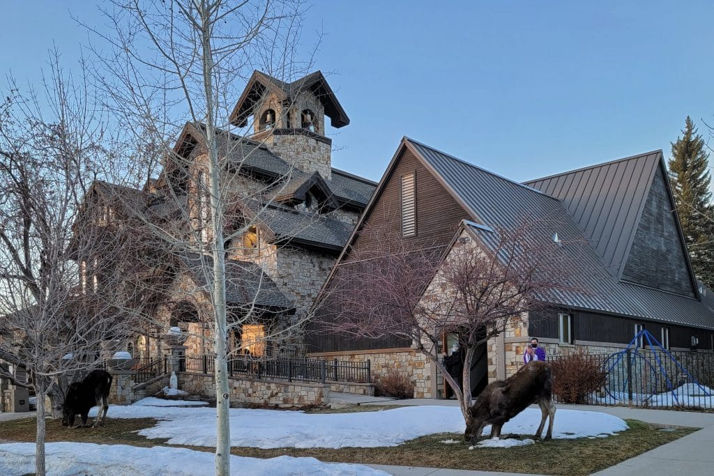 Even the moose come to pray at Holy Name Catholic Church during Lent! What a blessing to see this most Steamboat sight!