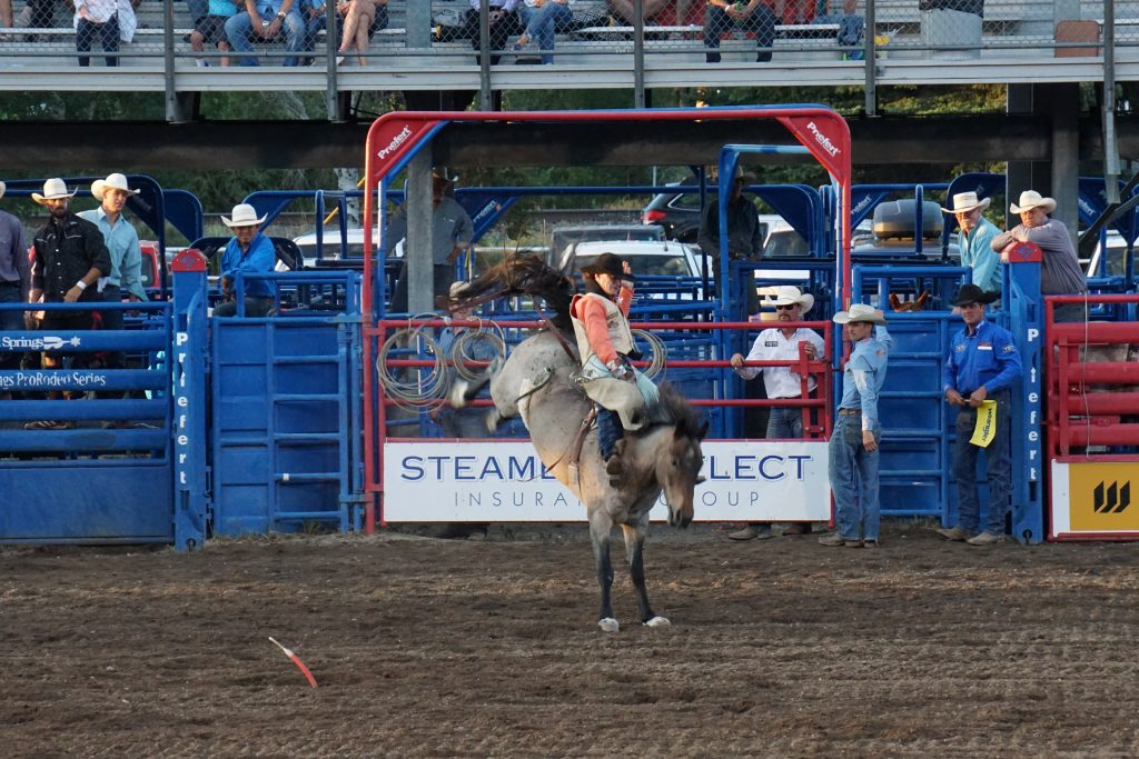 Rodeo Pic