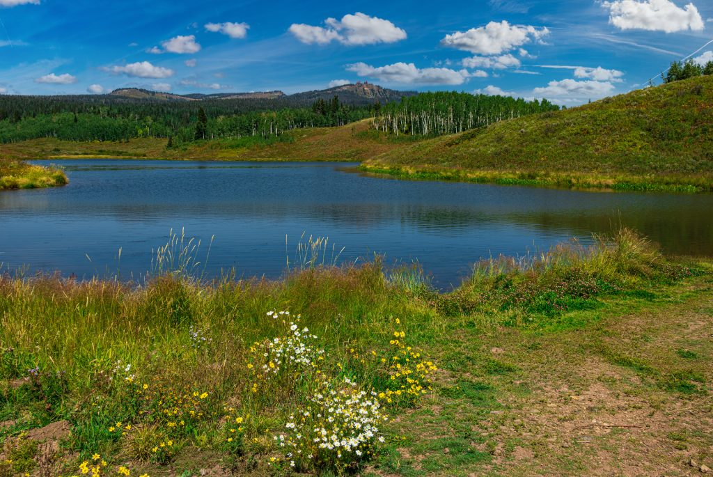 View up to the Rabbit ears over muddy pass lake.
