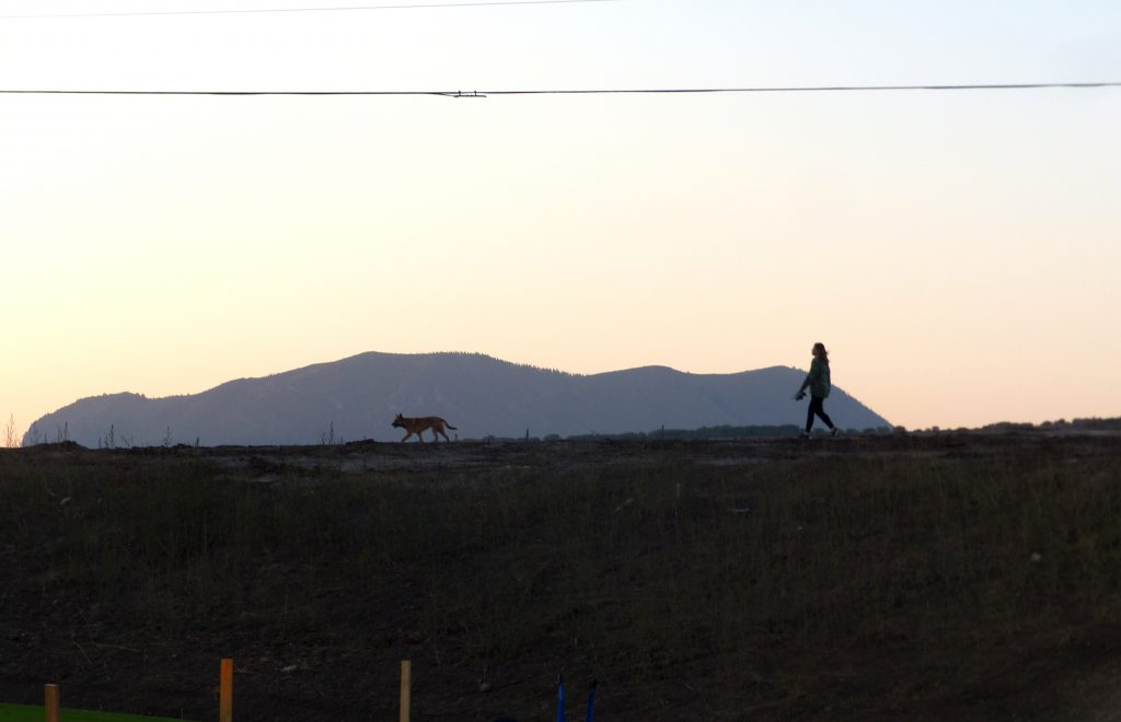 """Here is a pretty picture of a sunset dog walk with the """"Sleeping Giant"""" in the background. This was taken on the west side of Steamboat near the new Sleeping Giant School which just opened to Pre-K through 8th graders."""