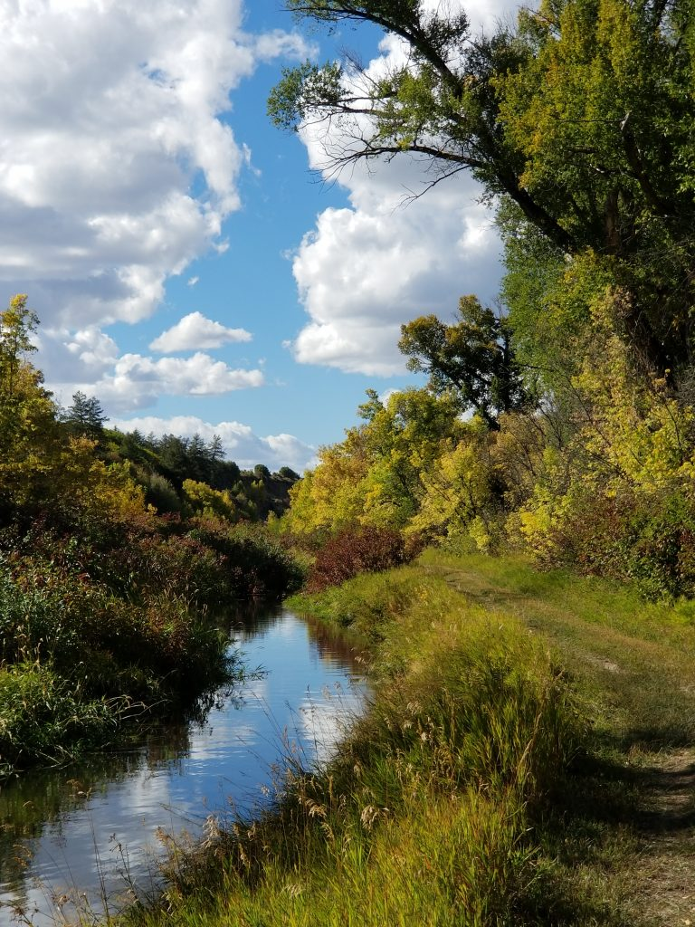 Fall colors in the Nature Conservancy\'s secret gem: the Yampa River Preserve